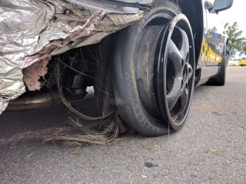 Tire Carcass